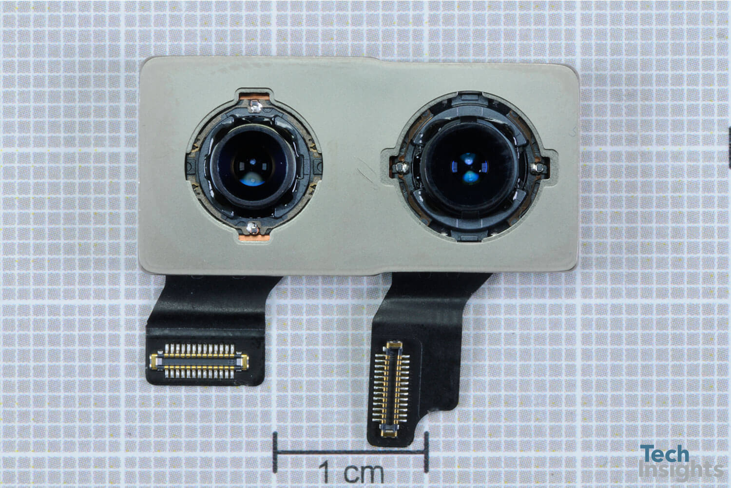 Rear-Facing Wide-Angle Camera